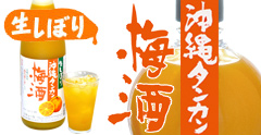 生しぼり沖縄タンカン梅酒