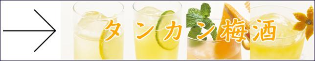 タンカン梅酒カクテルレシピ