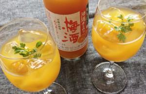 タンカン梅酒