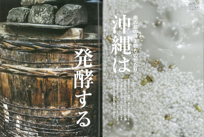 沖縄は発酵する